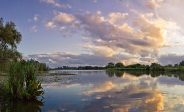 Réserve Naturelle Nationale des Étangs du Romelaëre