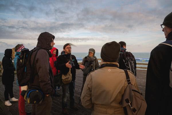 Animation nature au Cap Blanc-Nez sur la migration